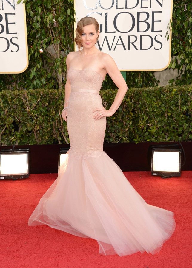 Amy Adams Marchesa Golden Globe 2013