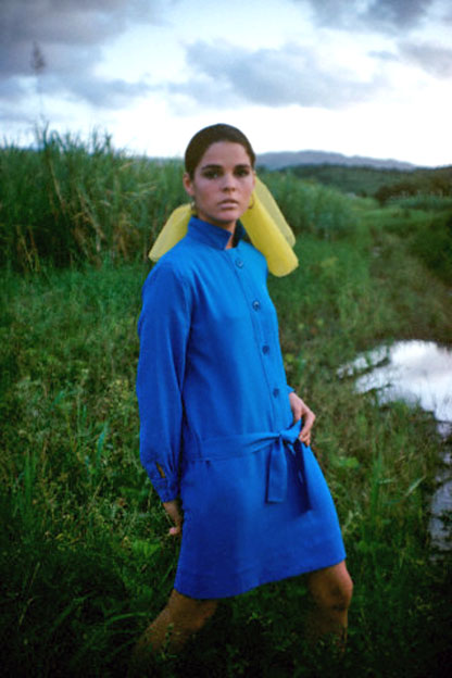 Ali MacGraw in Marshy Field