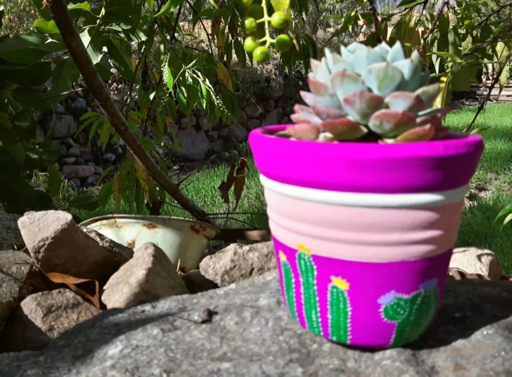 ceramicas artesanales urubamba Las suculentas