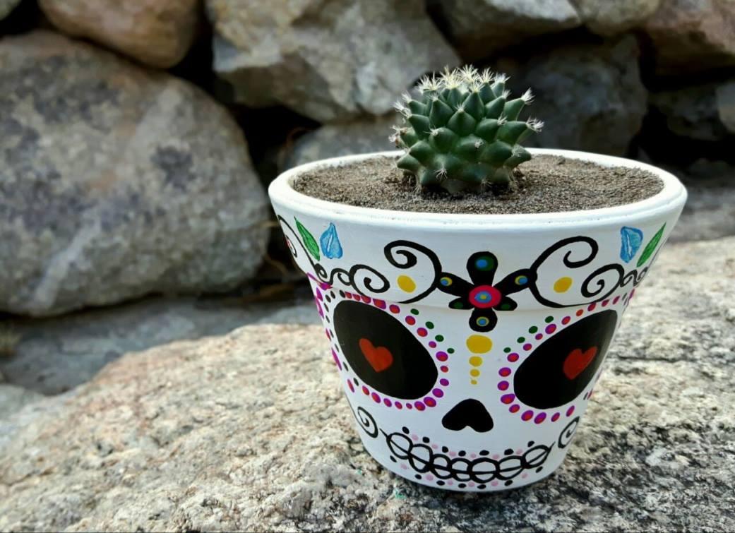 ceramicas artesanales urubamba Las suculentas  1