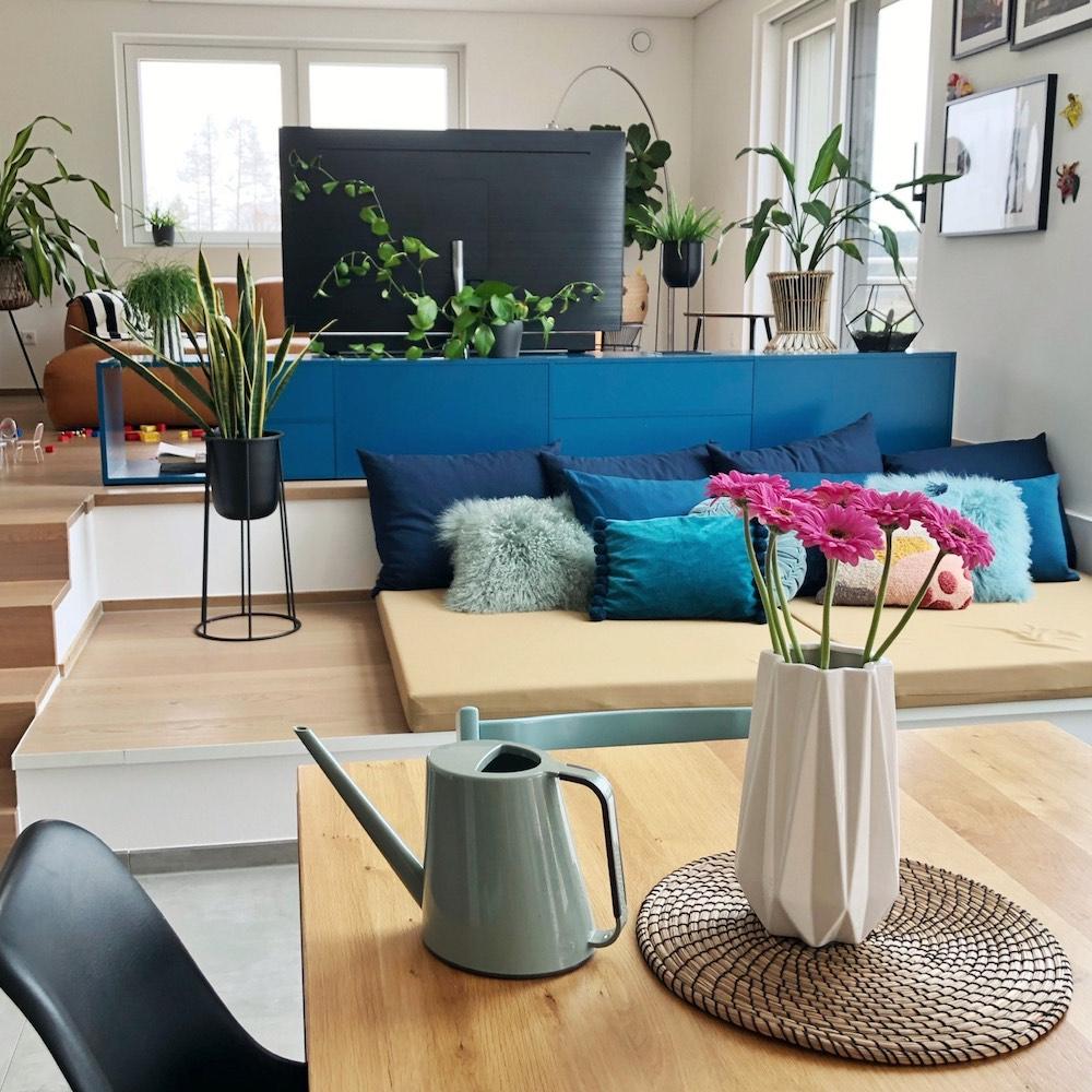 Cómo elegir y cuidas las plantas de la casa 1